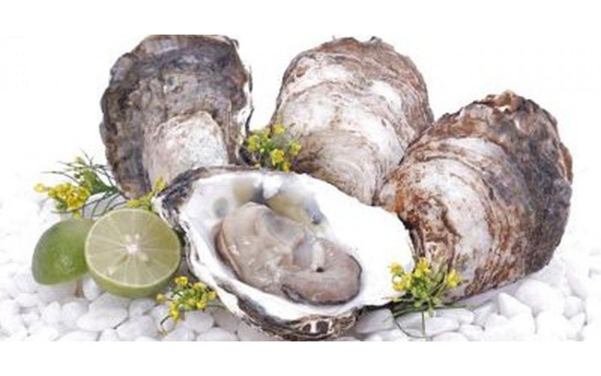 Hải sản sống tái - bổ dưỡng hay không?